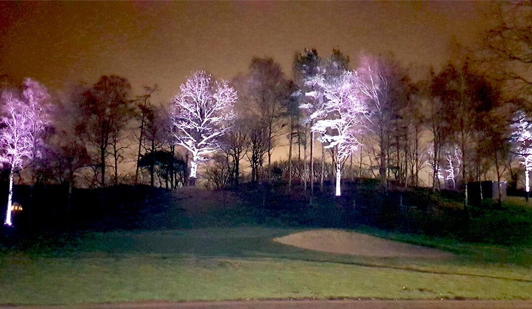 Ljussättning hos Sankt Jörgen Park